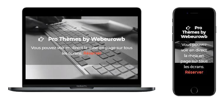 Commandez votre site entièrement personnalisé Pro Thèmes Website by WebeuroWB